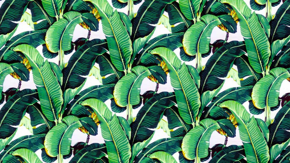 bananlevel-tapeta_1.jpg