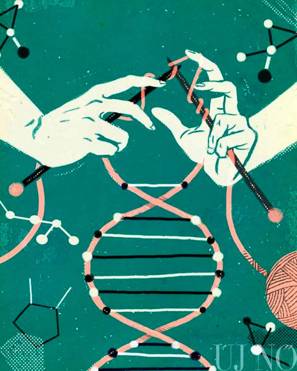 genetika-kotes.jpg