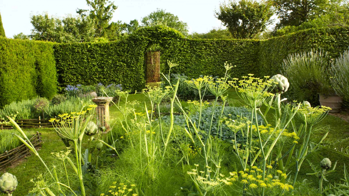 herbal-garden-indito.jpg