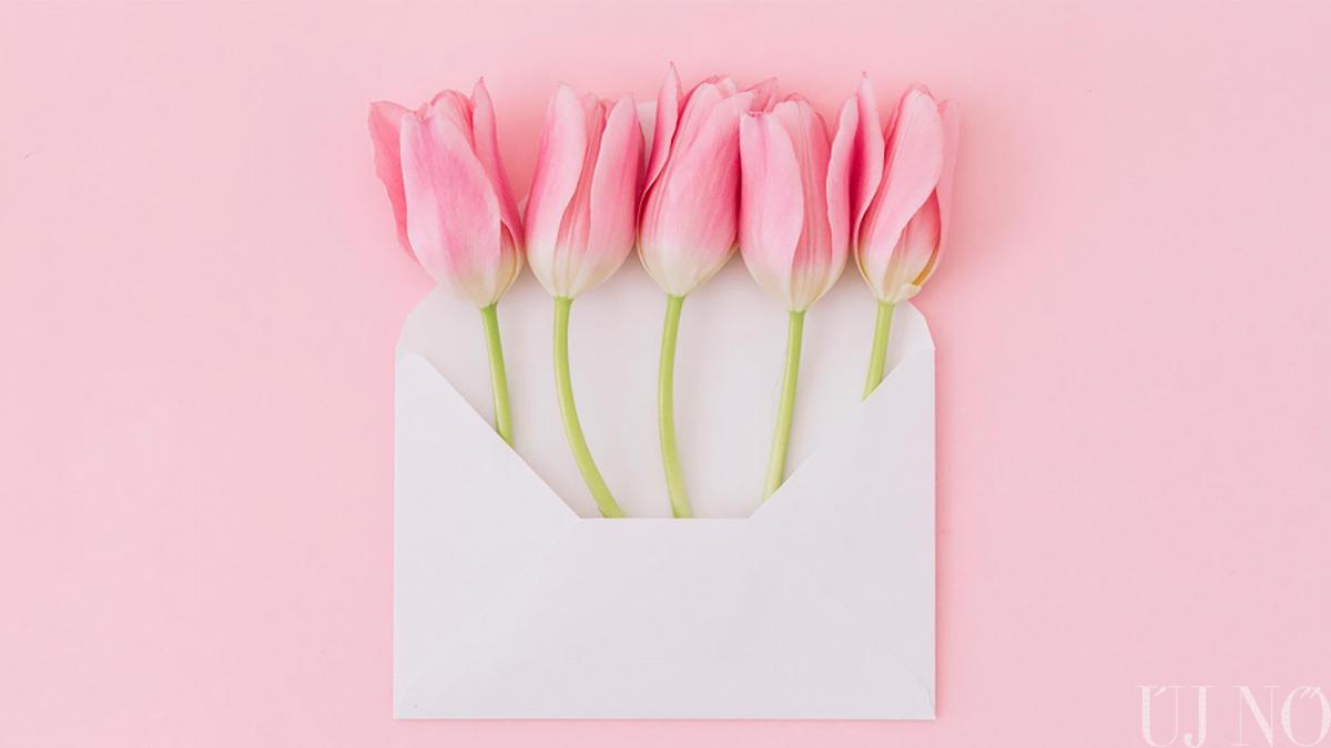 leveltitok-kezdo.jpg