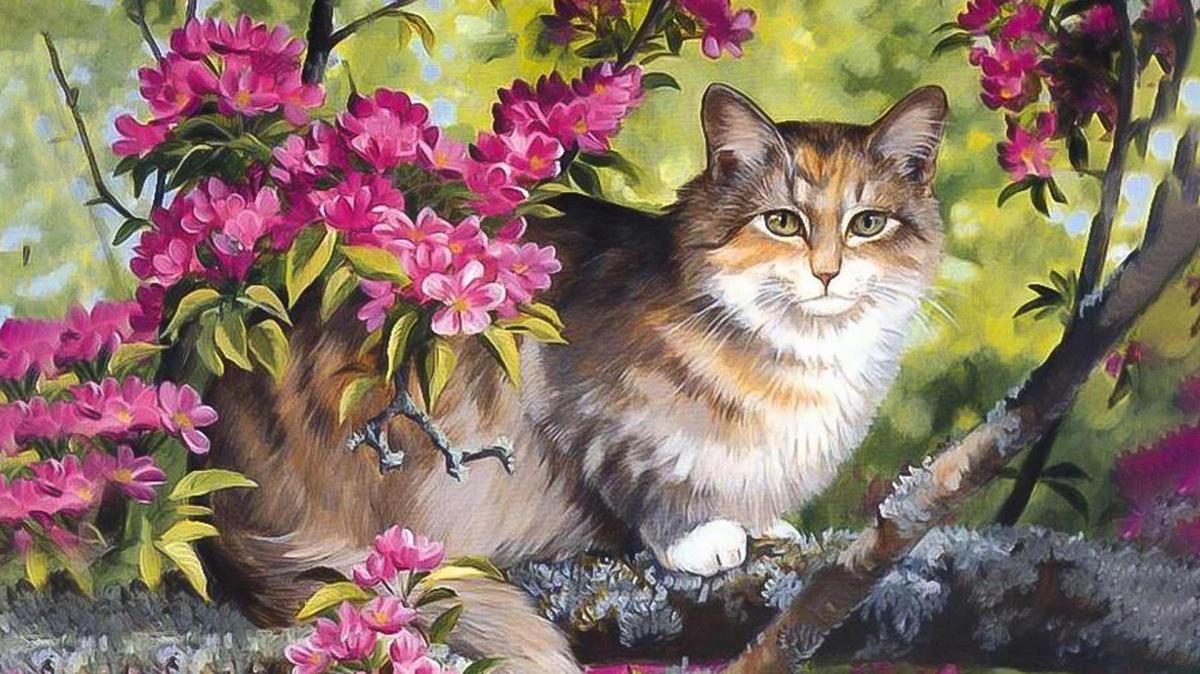 macska-festmeny_0.jpg