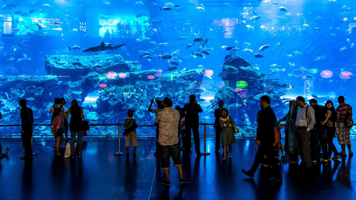 orias-akvarium-dubaj.jpg