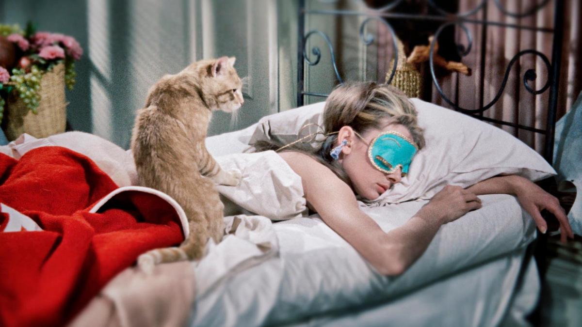 pizsama-macskas-uj-no.jpg