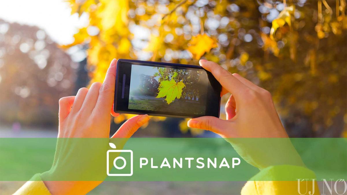plants-app.jpg