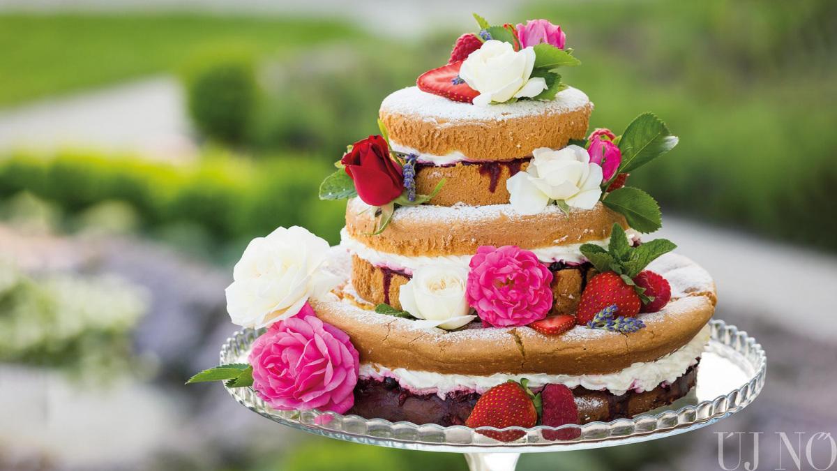 pucer-torta.jpg