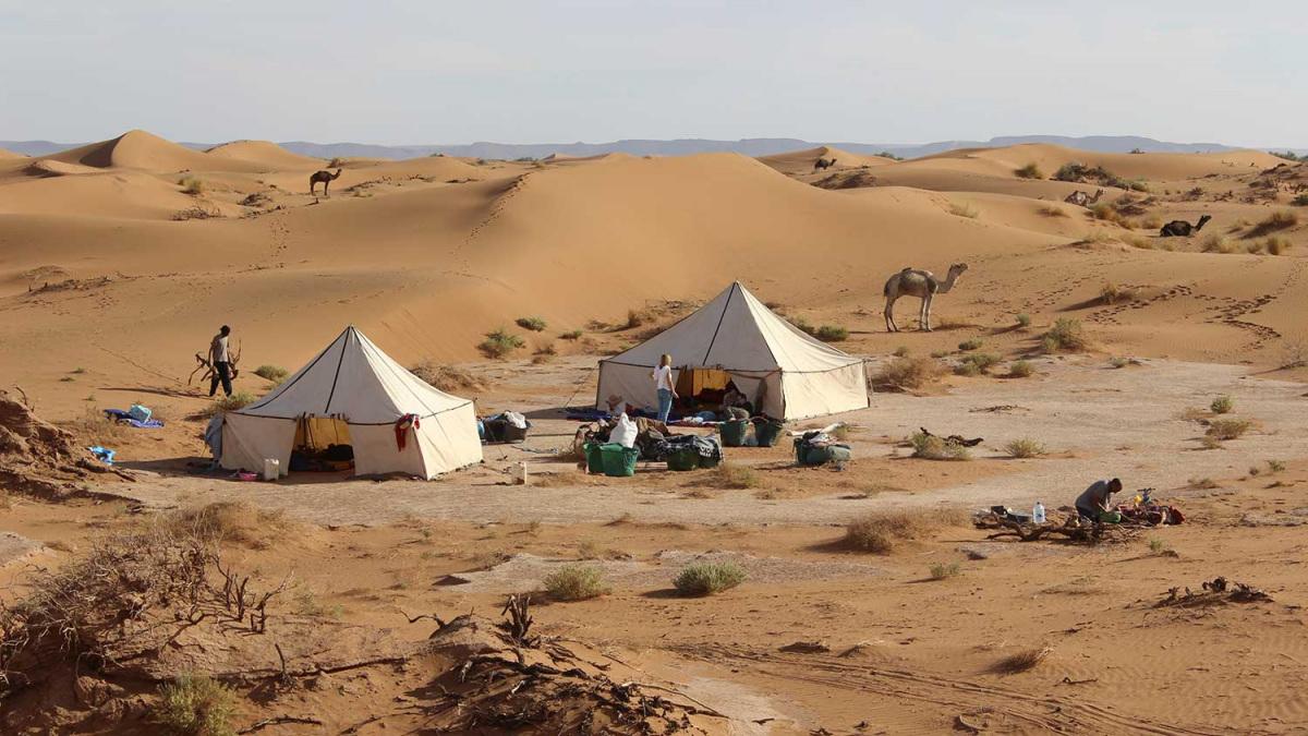 vilagutazo-marokko-satrak.jpg