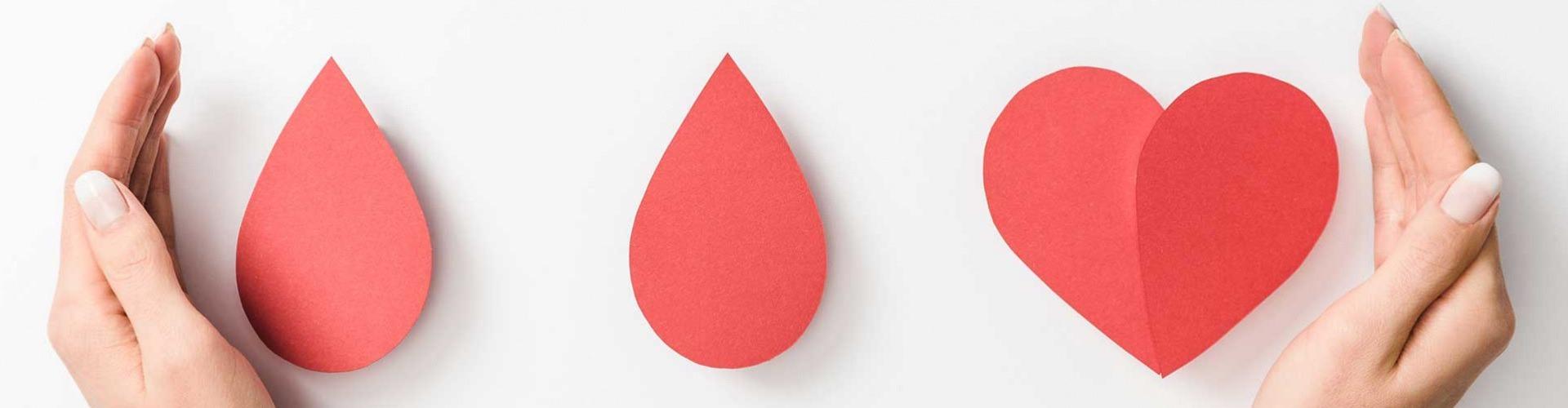 Vért adunk