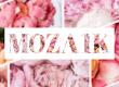 Virágzó mozaik