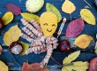 #Octoper: Idén is hódítanak a horgolt polipkák!