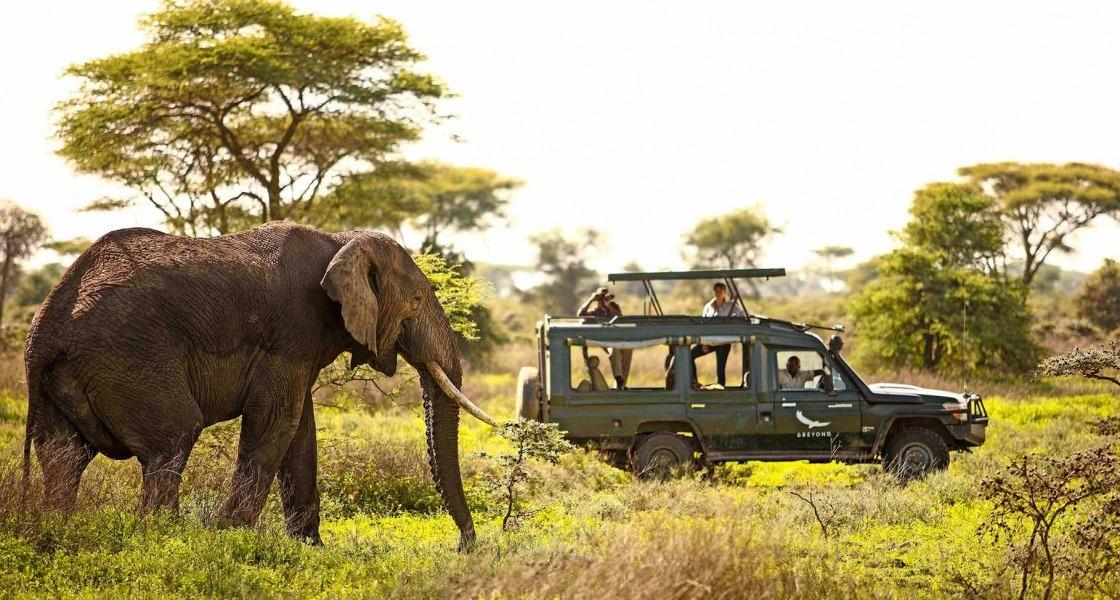 Szafarin Afrikában