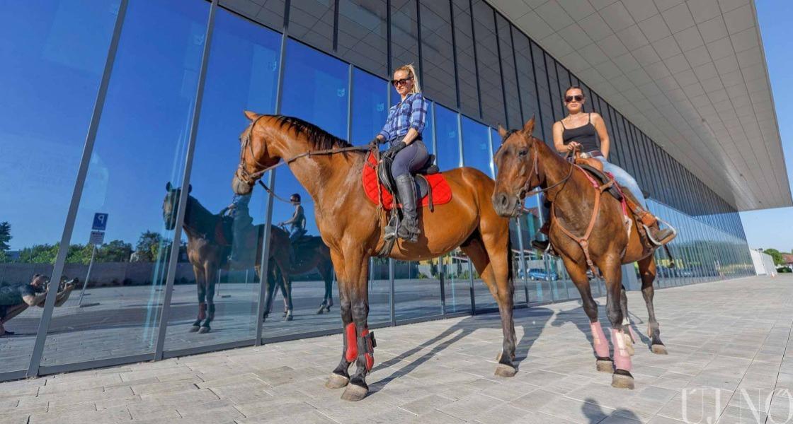 A lovak már a városban vannak
